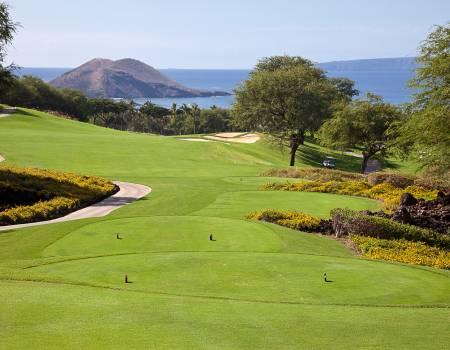 Maui Luxury Vacation Rental Services, Concierge