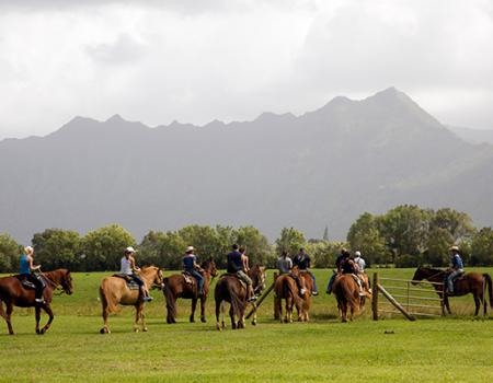 Princeville Horseback Riding