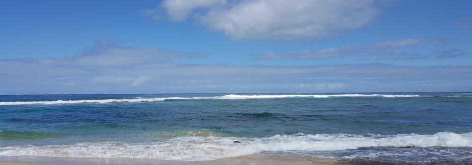 hawaii big island beach