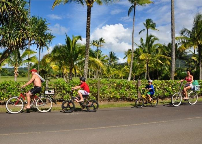 Ride bikes to beach, rentals available