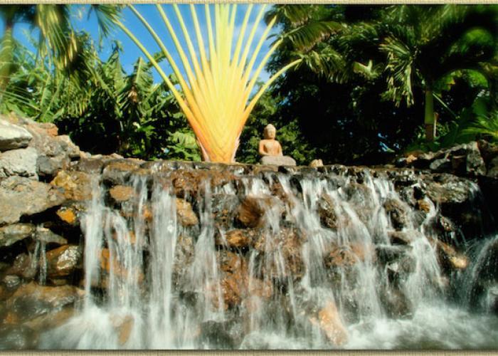 Waterfall in backyard