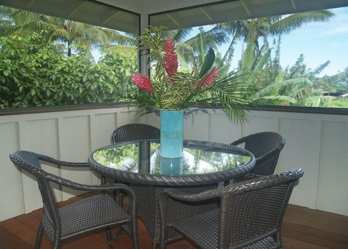 Dining on screened lanai with bbq