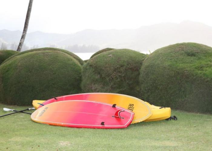 SUPs and kayak in yard