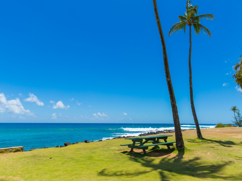 Hawaii Vacation Rental Home, Kauai snorkeling