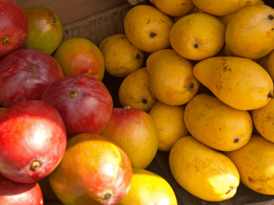 colorful hawaiian mango varieties