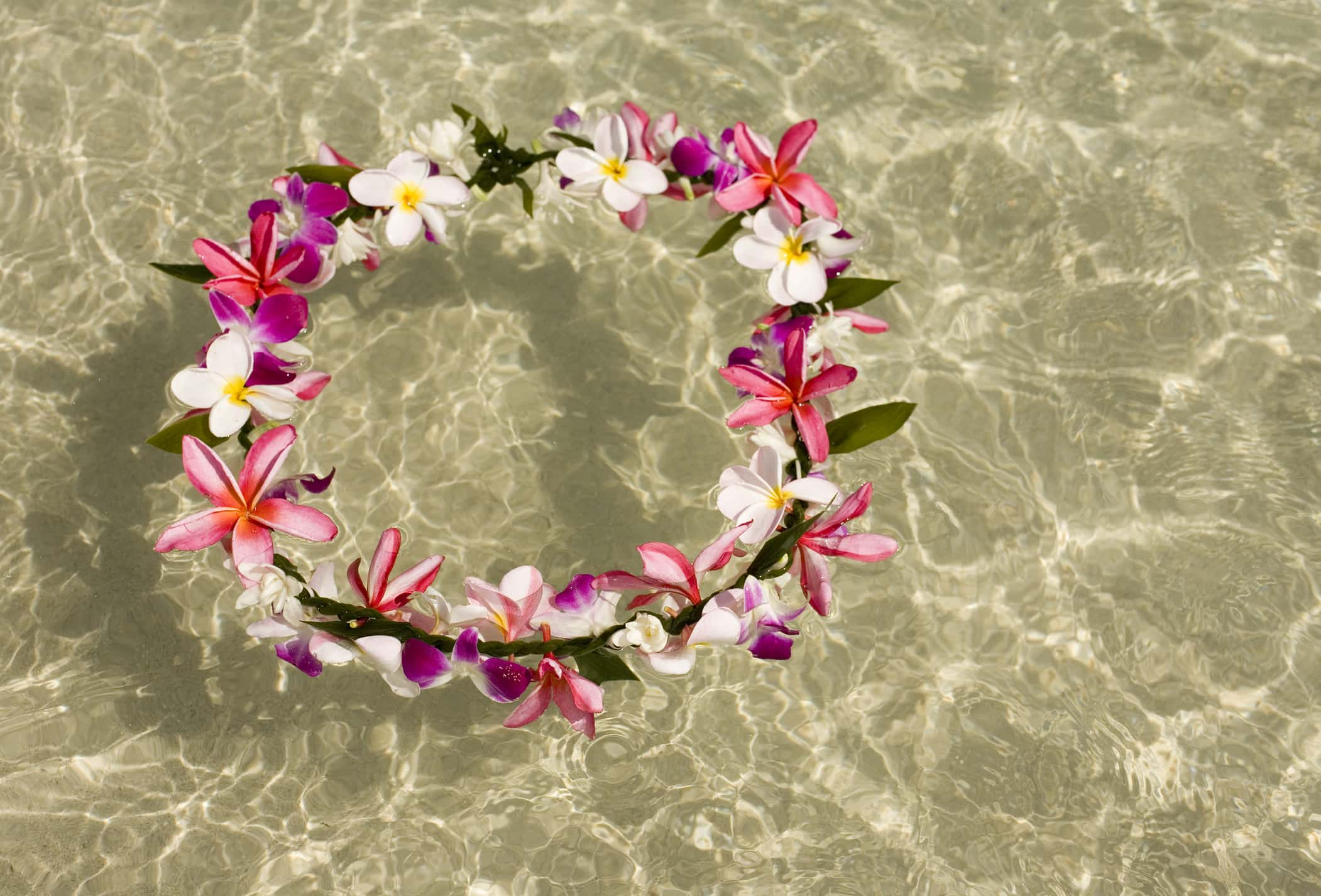hawaiian lei floating in the ocean