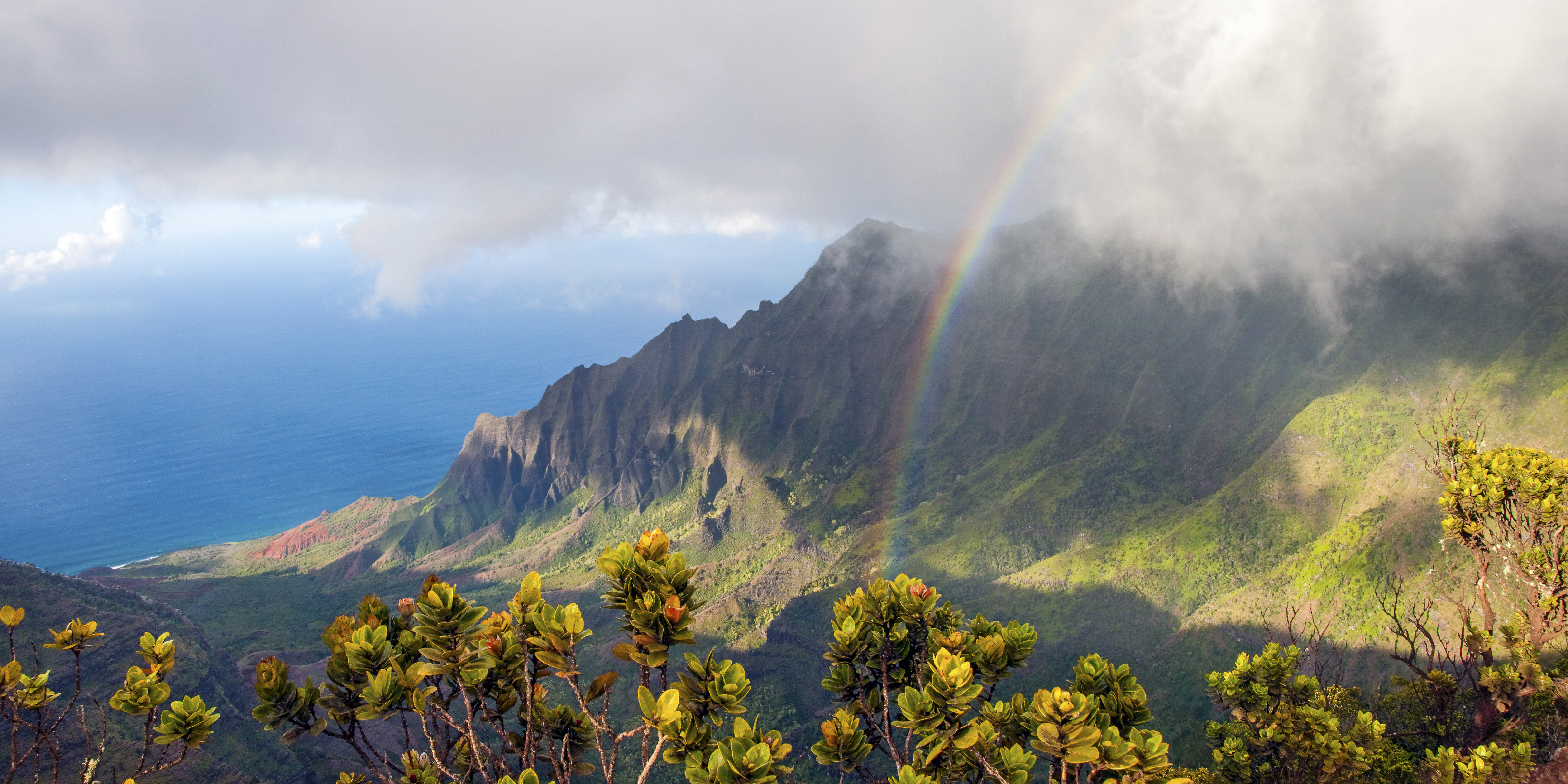 Kalalau Lookout, Kokee State Park, Hawaii Life Vacation Rental, Luxury Kauai Rental